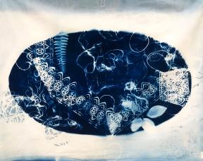 cyanotype004