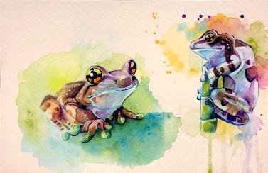 frogs_insta001